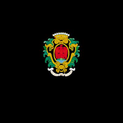 Ville de nice (logo)